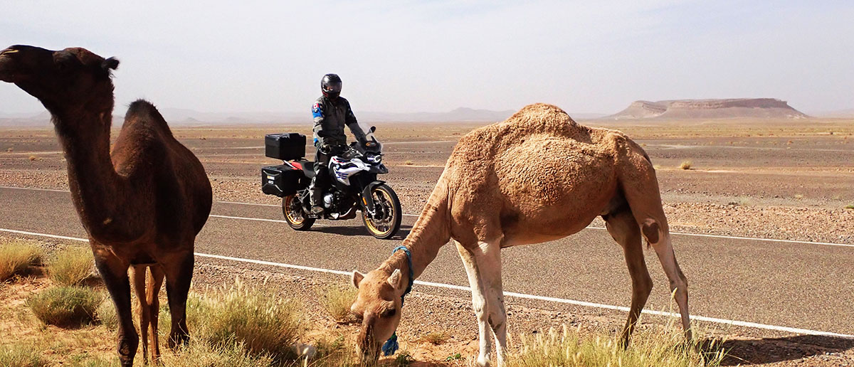Morocco-Guided-Motorcycle-Tours
