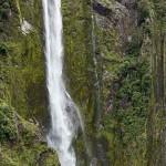 New Zealand Tour_1