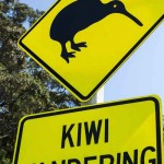 New Zealand Tour_14