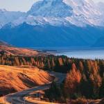 New Zealand Tour_20