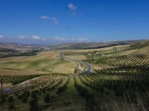Portugal Y sur de españa imtbike