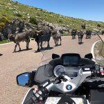 Ruta en moto El Gran Descubrimiento del Norte España Europa